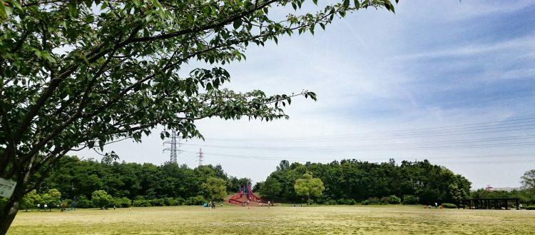 戸田川緑地の広場 奥には滑り台