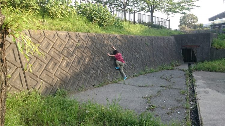 壁をよじ登ろうとするじょにー